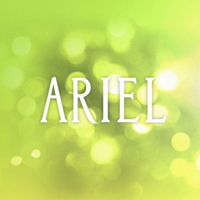 Ariel Vineyards Website Design
