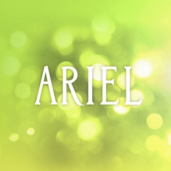 Ariel Vineyards Website Design