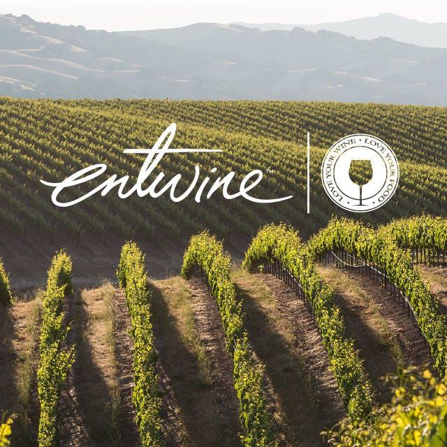 Entwine Website Design
