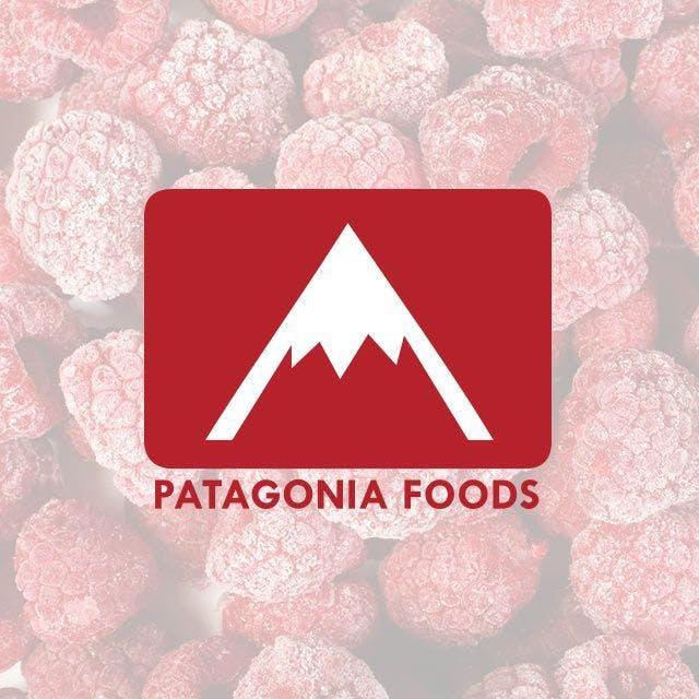 Patagonia Foods Website Design