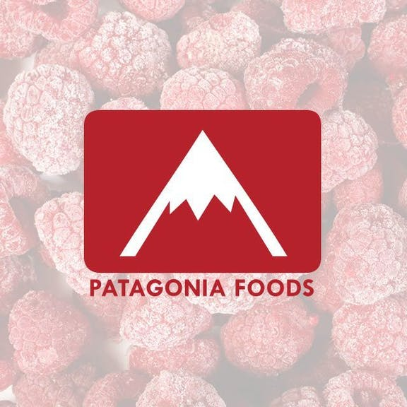 Patagonia Foods Website Design