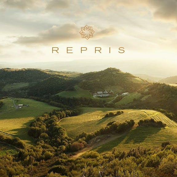 Repris Website Design